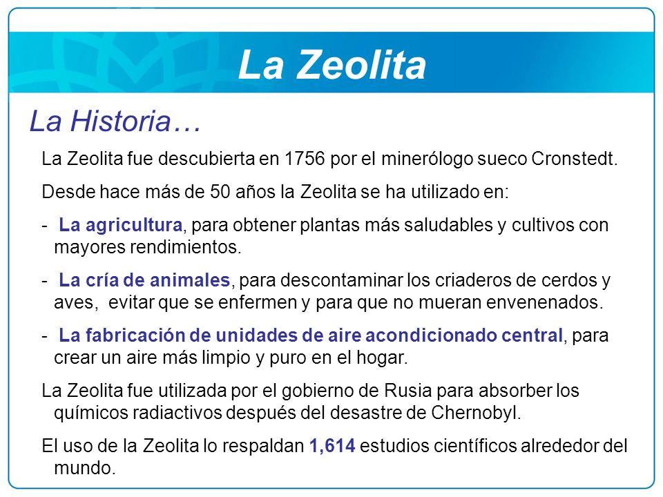 La Zeolita La Historia… La Zeolita fue descubierta en 1756 por el minerólogo sueco Cronstedt. Desde hace más de 50 años la Zeolita se ha utilizado en: