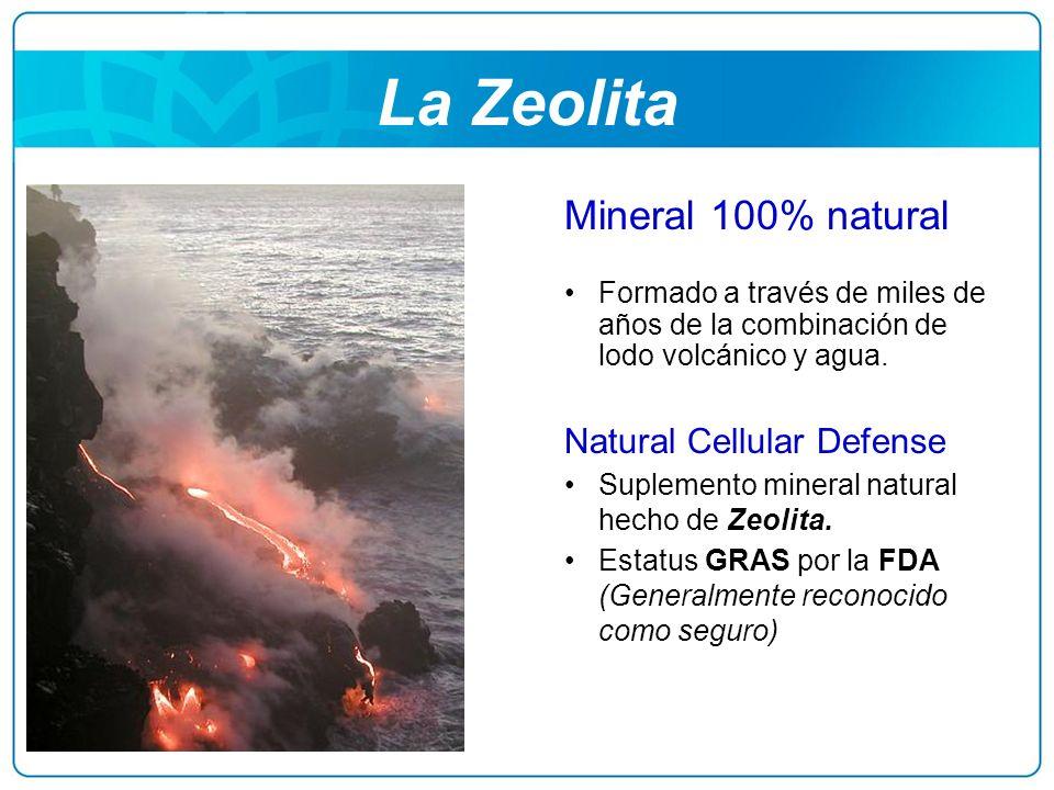 La Zeolita Mineral 100% natural Formado a través de miles de años de la combinación de lodo volcánico y agua. Natural Cellular Defense Suplemento mine