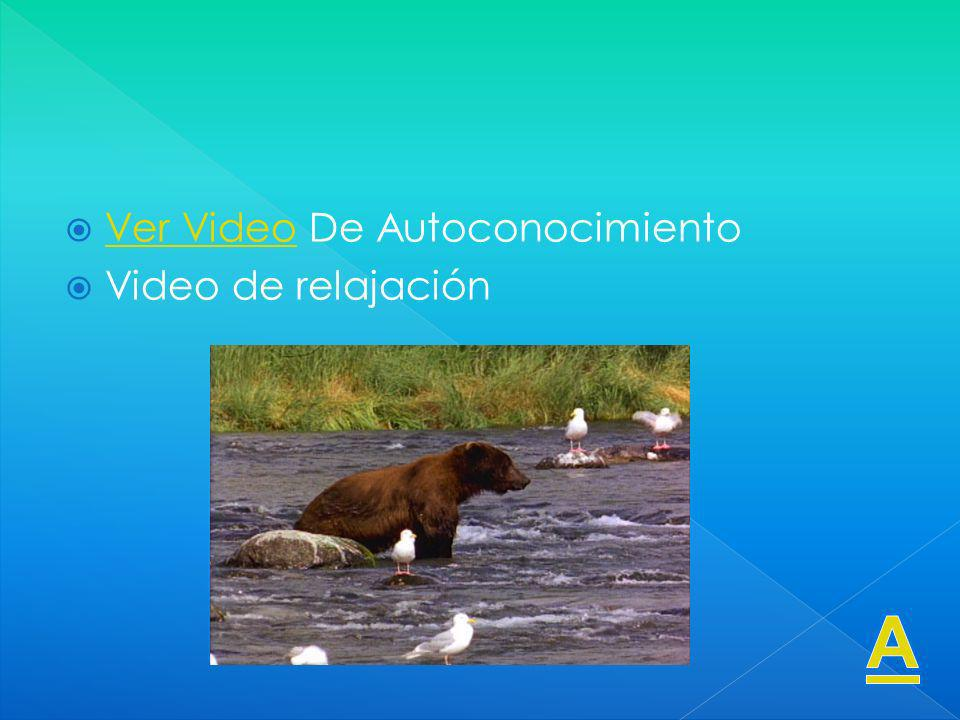 Ver Video De Autoconocimiento Ver Video Video de relajación