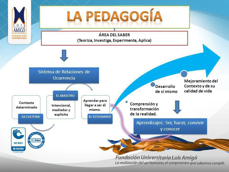 ÁREA DEL SABER (Teoriza, Investiga, Experimenta, Aplica) Sistema de Relaciones de Ocurrencia Intencional, mediador y explícito Contexto determinado Ap