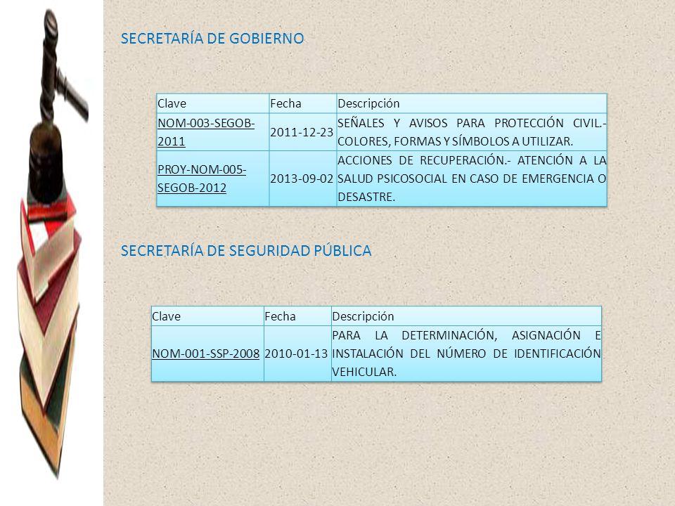 SECRETARÍA DE GOBIERNO SECRETARÍA DE SEGURIDAD PÚBLICA