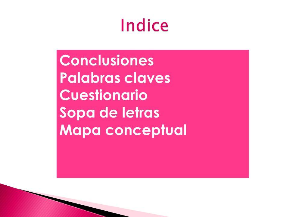 Conclusiones Palabras claves Cuestionario Sopa de letras Mapa conceptual