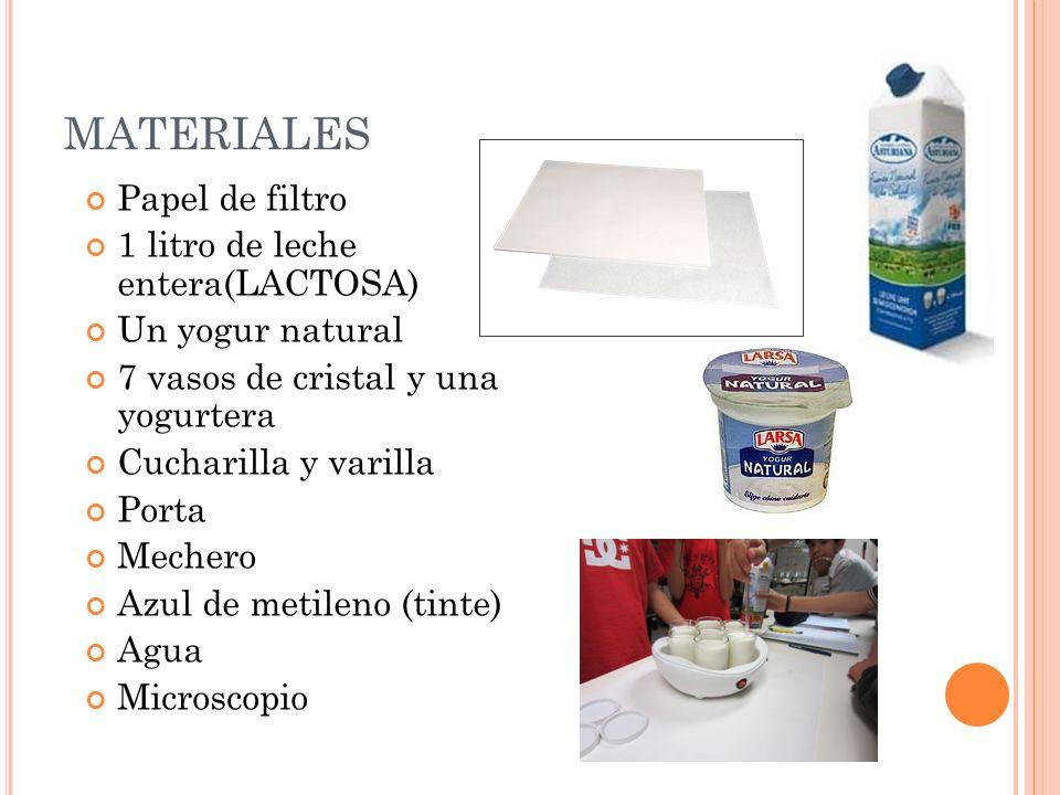 MATERIALES Papel de filtro 1 litro de leche entera(LACTOSA) Un yogur natural 7 vasos de cristal y una yogurtera Cucharilla y varilla Porta Mechero Azu