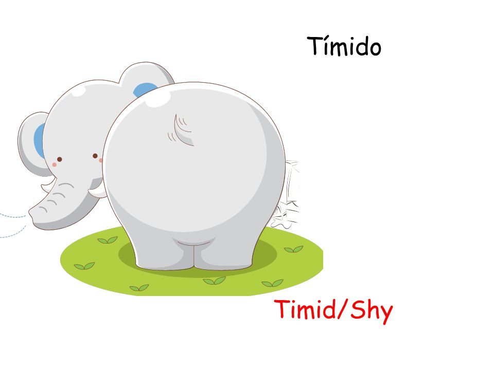 Tímido Timid/Shy