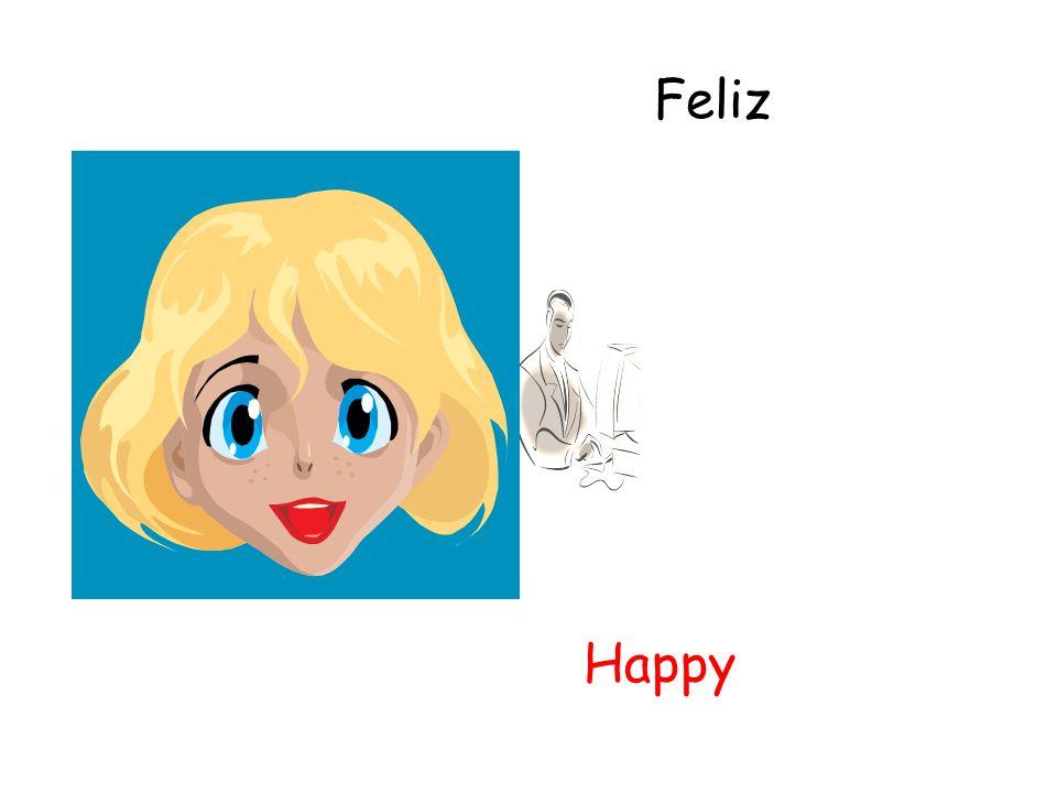 Feliz Happy