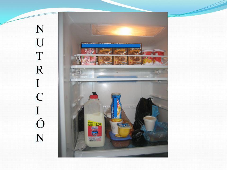NUTRICIÓNNUTRICIÓN NUTRICIÓNNUTRICIÓN