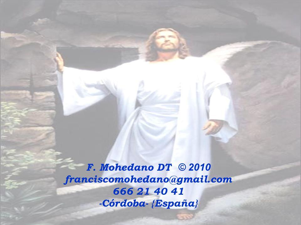 F. Mohedano DT © 2010 franciscomohedano@gmail.com 666 21 40 41 -Córdoba- {España}