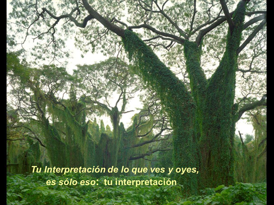Tu Interpretación de lo que ves y oyes, es sólo eso : tu interpretación