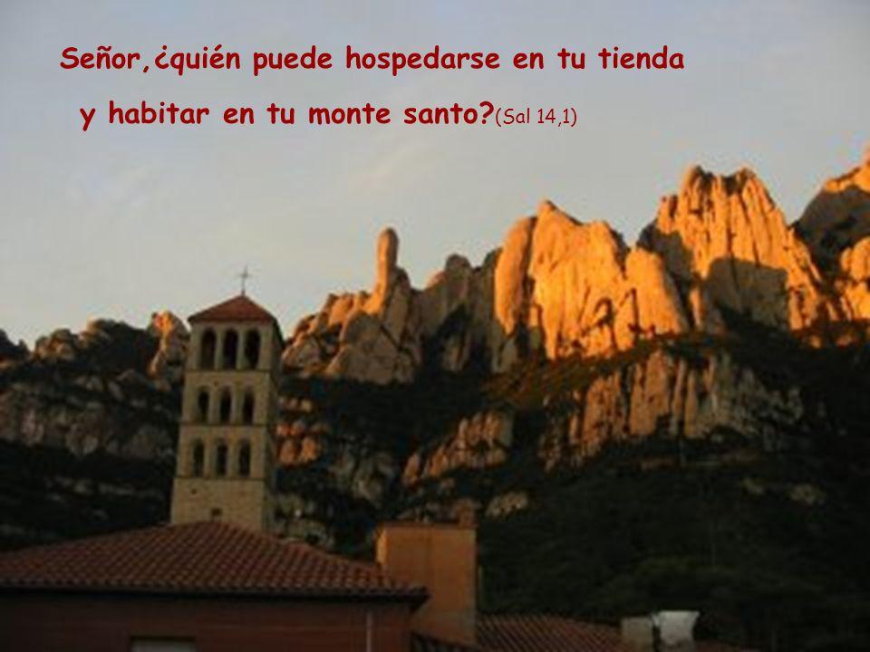 Señor,¿quién puede hospedarse en tu tienda y habitar en tu monte santo (Sal 14,1)