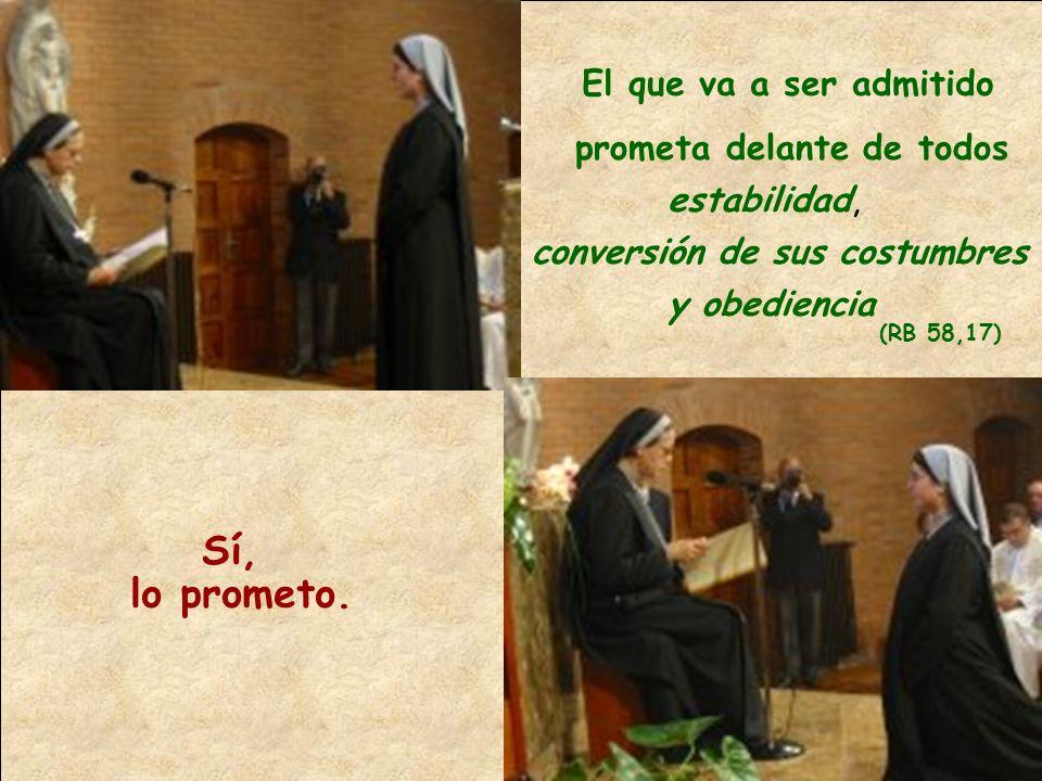 El que va a ser admitido prometa delante de todos estabilidad, conversión de sus costumbres y obediencia (RB 58,17) Sí, lo prometo.