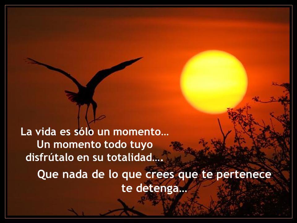 La vida es sólo un momento… Un momento todo tuyo disfrútalo en su totalidad….