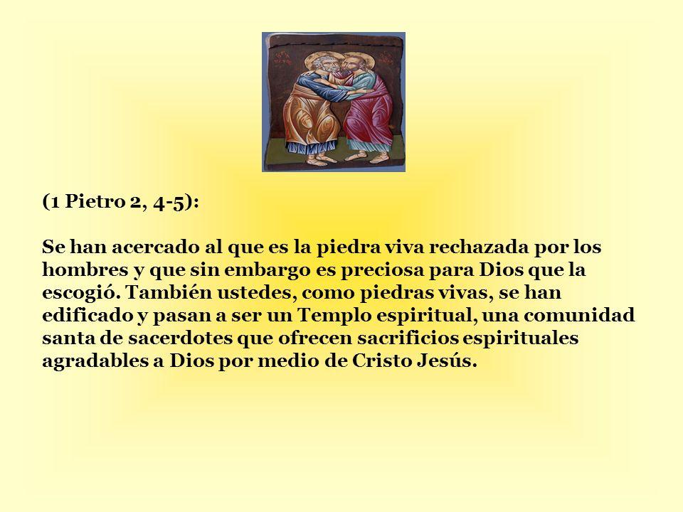 (1 Pietro 2, 4-5): Se han acercado al que es la piedra viva rechazada por los hombres y que sin embargo es preciosa para Dios que la escogió.