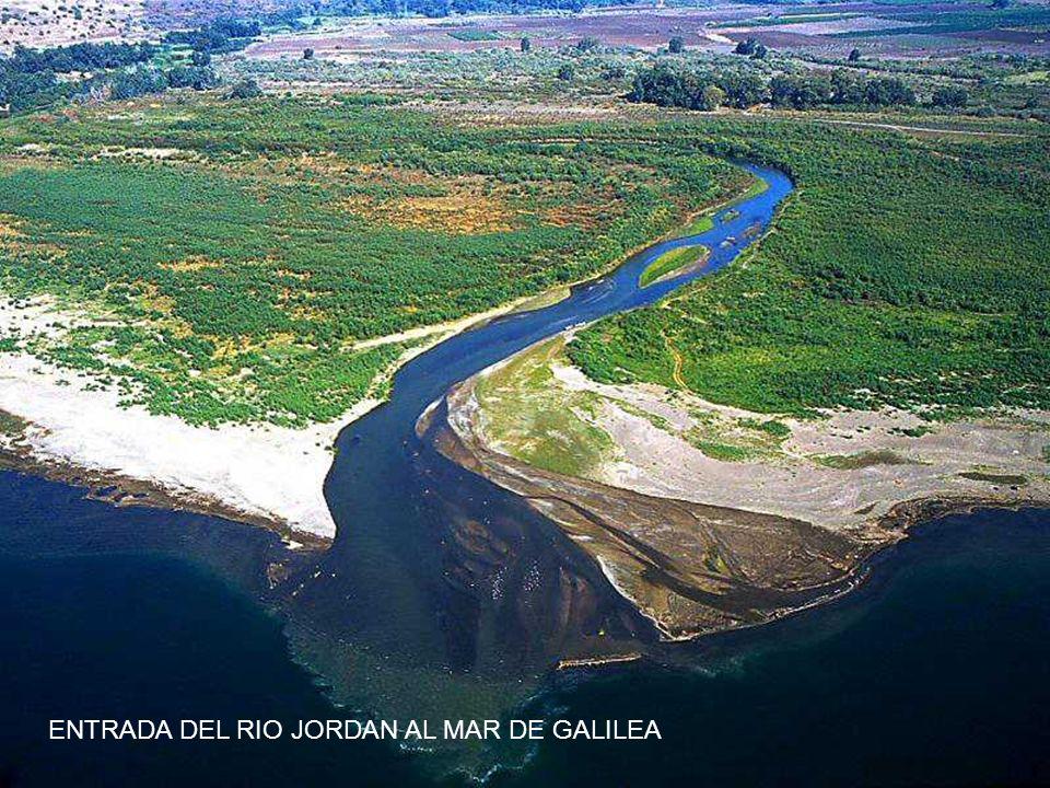 ENTRADA DEL RIO JORDAN AL MAR DE GALILEA