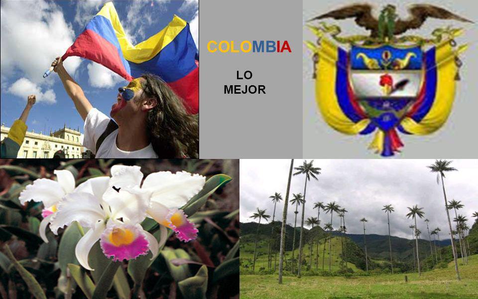 LO MEJOR COLOMBIA 1