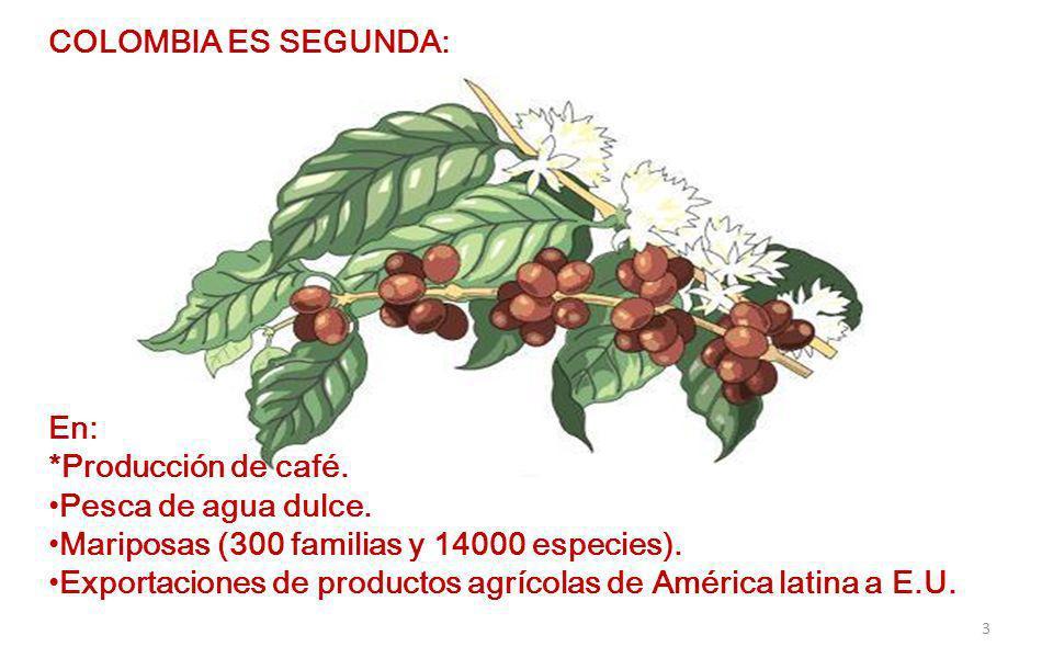 COLOMBIA ES SEGUNDA: En: *Producción de café.Pesca de agua dulce.