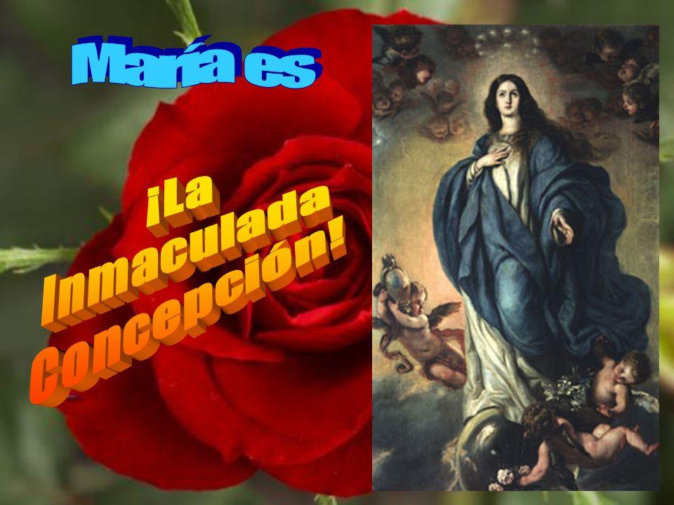 Signo de esta bendición de Dios es el que su madre sea Inmaculada.