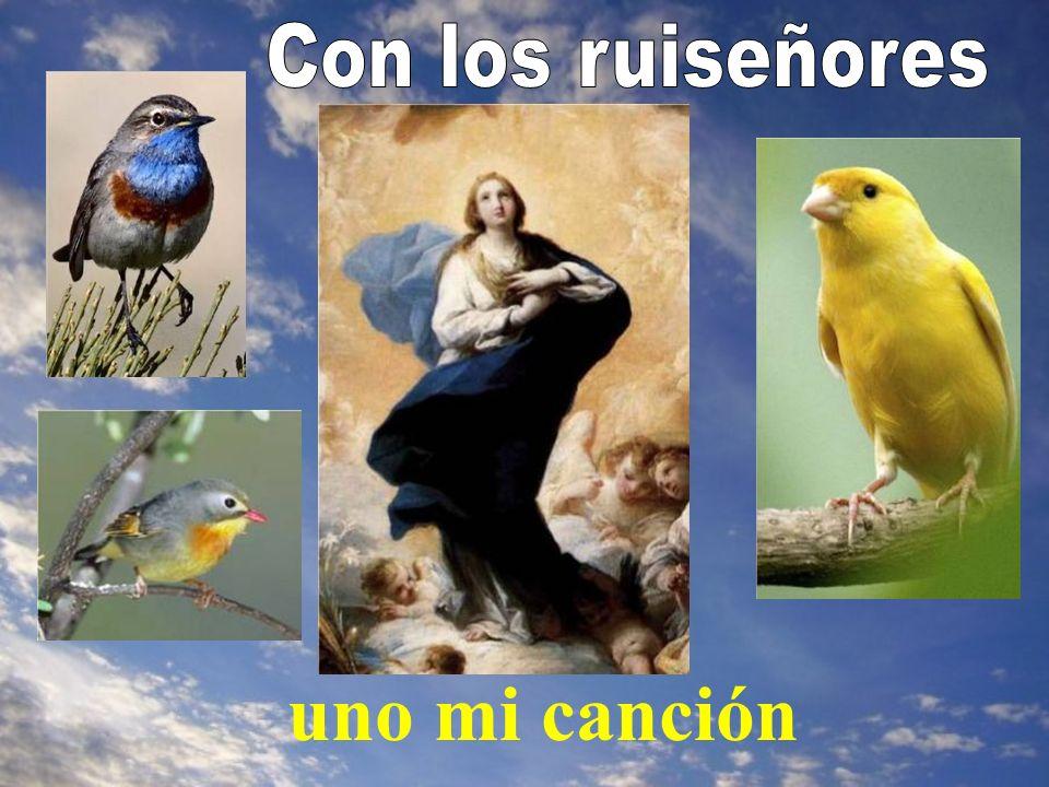 Y continúa diciendo el papa Juan Pablo II: De Ella debemos aprender, por consiguiente, a prepararnos para la Navidad y para la segunda venida del Señor, al fin de los tiempos.