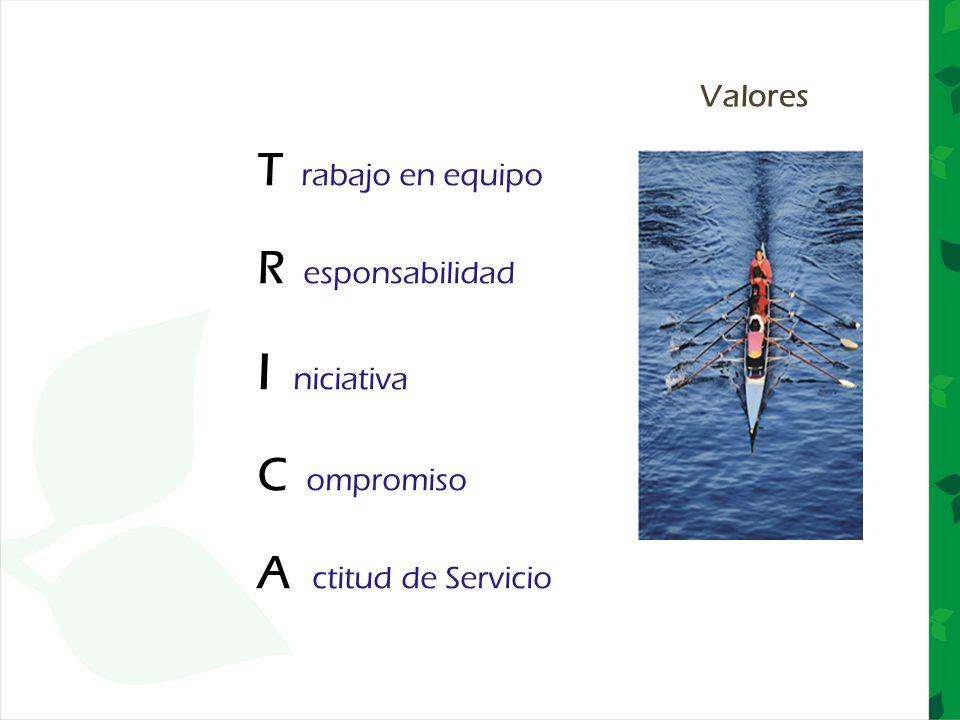 T rabajo en equipo R esponsabilidad I niciativa C ompromiso A ctitud de Servicio Valores