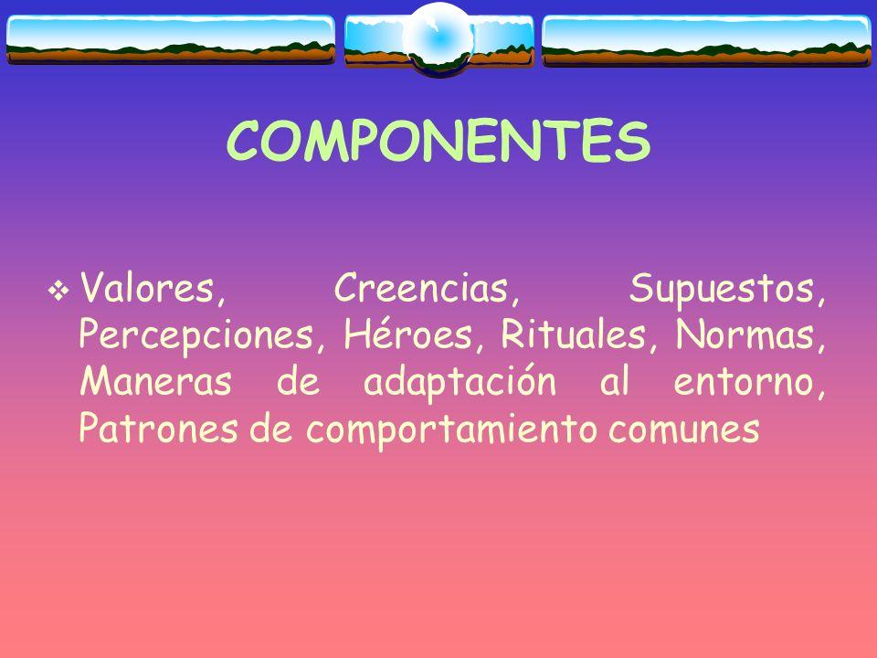 COMPONENTES Valores, Creencias, Supuestos, Percepciones, Héroes, Rituales, Normas, Maneras de adaptación al entorno, Patrones de comportamiento comunes
