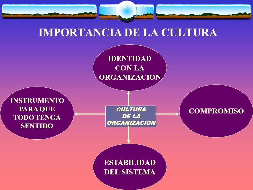 IMPORTANCIA DE LA CULTURA IDENTIDAD CON LA ORGANIZACION INSTRUMENTO PARA QUE TODO TENGA SENTIDO ESTABILIDAD DEL SISTEMA COMPROMISO CULTURA DE LA ORGANIZACION