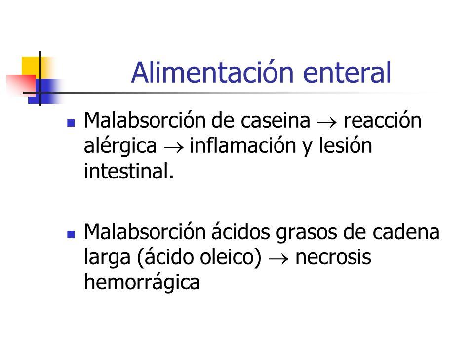 Alimentación enteral Malabsorción de caseina reacción alérgica inflamación y lesión intestinal. Malabsorción ácidos grasos de cadena larga (ácido olei
