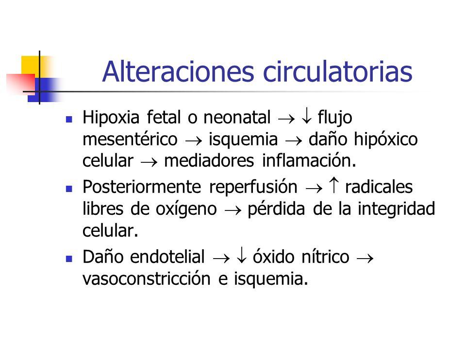 Alteraciones circulatorias Hipoxia fetal o neonatal flujo mesentérico isquemia daño hipóxico celular mediadores inflamación. Posteriormente reperfusió