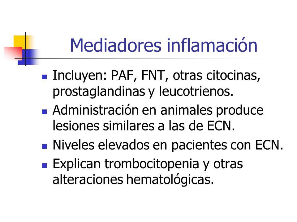 Mediadores inflamación Incluyen: PAF, FNT, otras citocinas, prostaglandinas y leucotrienos. Administración en animales produce lesiones similares a la