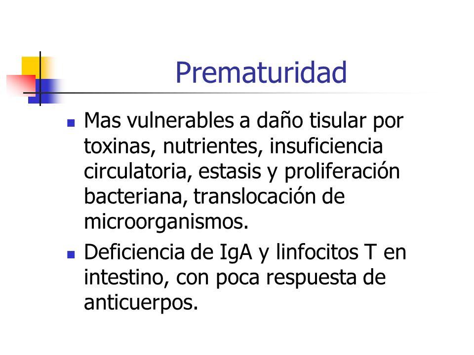 Prematuridad Mas vulnerables a daño tisular por toxinas, nutrientes, insuficiencia circulatoria, estasis y proliferación bacteriana, translocación de
