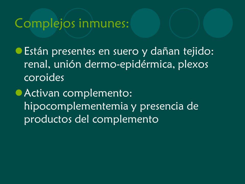 Complejos inmunes: Están presentes en suero y dañan tejido: renal, unión dermo-epidérmica, plexos coroides Activan complemento: hipocomplementemia y p
