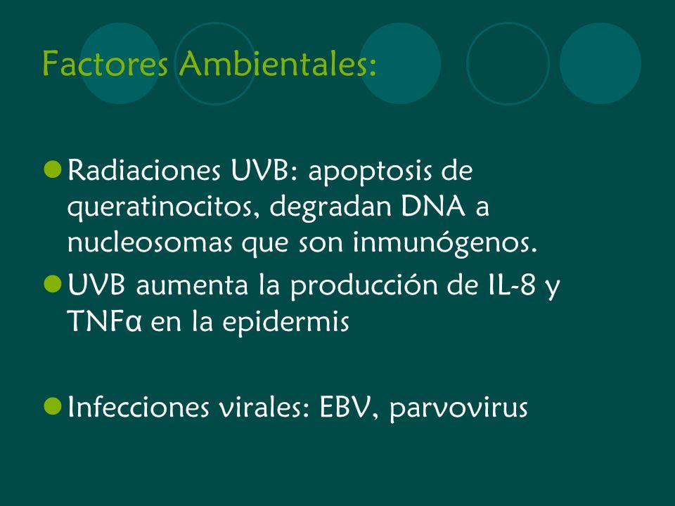 Factores Ambientales: Radiaciones UVB: apoptosis de queratinocitos, degradan DNA a nucleosomas que son inmunógenos. UVB aumenta la producción de IL-8