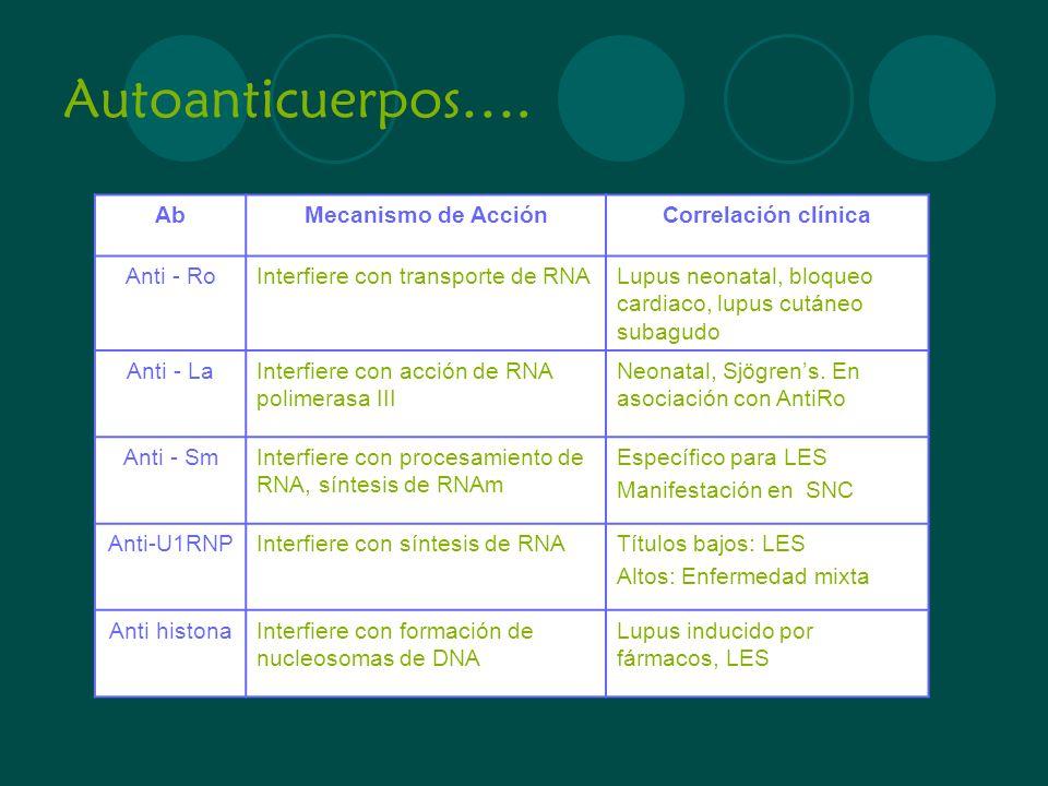 Autoanticuerpos…. AbMecanismo de AcciónCorrelación clínica Anti - RoInterfiere con transporte de RNALupus neonatal, bloqueo cardiaco, lupus cutáneo su