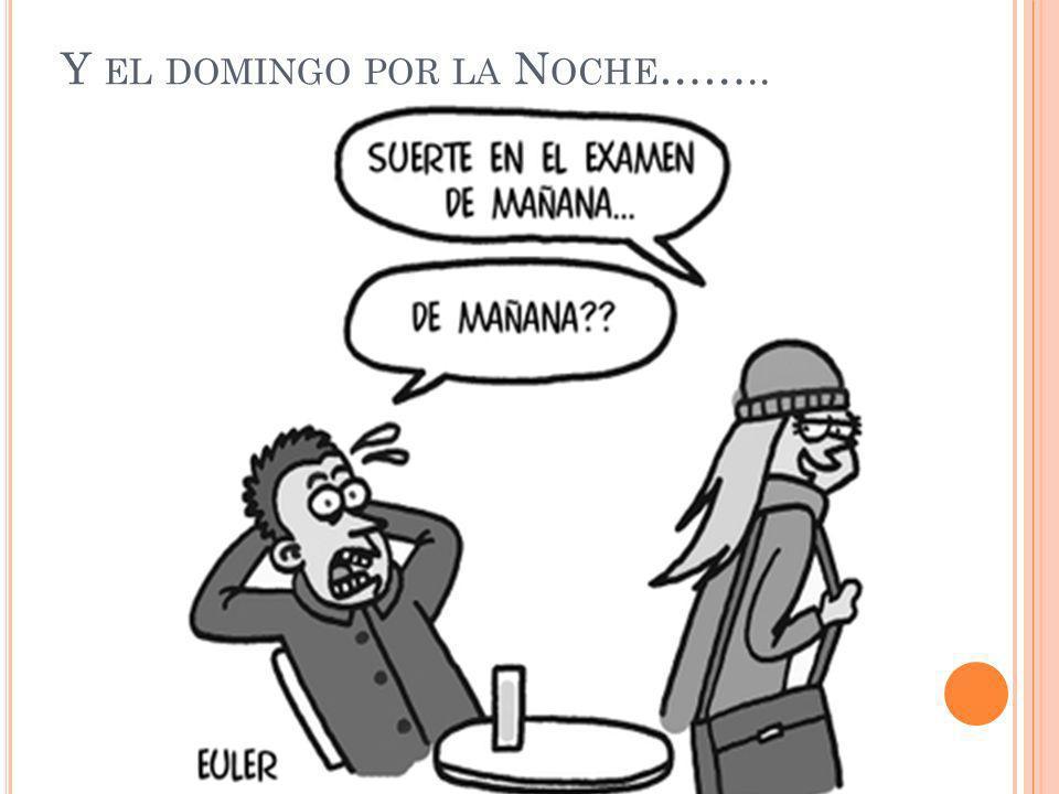 Y EL DOMINGO POR LA N OCHE ……..