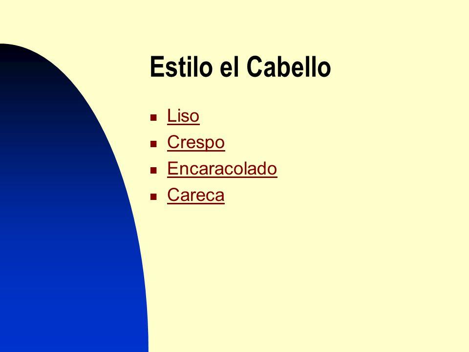 Estilo Estilo el Cabello cabello Liso Crespo Encaracolado Careca