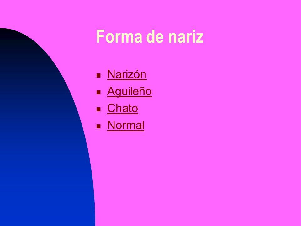 Forma de nariz Narizón Narizón Aguileño Chato Normal
