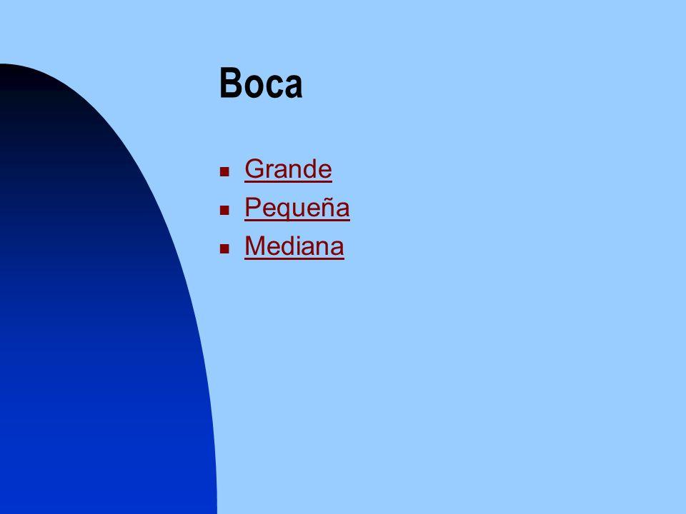 Boca Grande Pequeña Pequeña Mediana