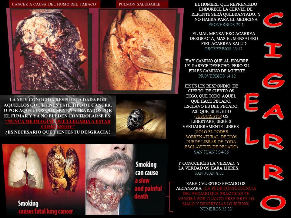 EL HOMBRE QUE REPRENDIDO ENDURECE LA CERVIZ, DE REPENTE SERÁ QUEBRANTADO, Y NO HABRÁ PARA ÉL MEDICINA PROVERBIOS 29:1 EL MAL MENSAJERO ACARREA DESGRAC