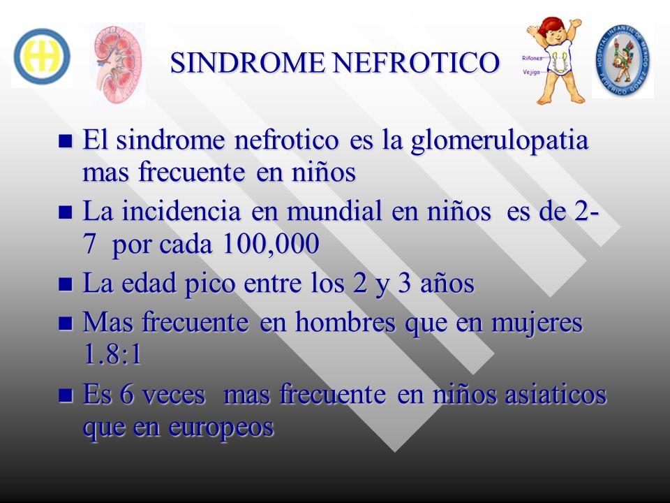 SINDROME NEFROTICO Se caracteriza clinicamente por la asociacion de edema, proteinuria, hipoalbunemia e hipercolesterolemia Se caracteriza clinicamente por la asociacion de edema, proteinuria, hipoalbunemia e hipercolesterolemia Proteinuria mayor a 40 mg/hr/m2sc o 50 mg/kg/dia en orina de 12 hrs Proteinuria mayor a 40 mg/hr/m2sc o 50 mg/kg/dia en orina de 12 hrs hipoalbuminemia menor de 2.5 mg/dl hipoalbuminemia menor de 2.5 mg/dl Hipercolesterolemia mayor a 200 mg/dl Hipercolesterolemia mayor a 200 mg/dl