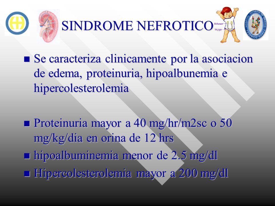 SINDROME NEFROTICO Se caracteriza clinicamente por la asociacion de edema, proteinuria, hipoalbunemia e hipercolesterolemia Se caracteriza clinicament