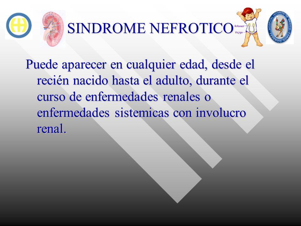 SINDROME NEFROTICO Enfermedades glomerulares primarias asociadas con sindrome nefrotico Lesiones glomerulares minimas Lesiones glomerulares minimas Glomeruloesclerosis focal y segmentaria Glomeruloesclerosis focal y segmentaria proliferacion mesangial proliferacion mesangial Glomerulonefritos linfoproliferativa tipo I, II y III Glomerulonefritos linfoproliferativa tipo I, II y III Glomerulonefritis membranosa Glomerulonefritis membranosa Glomerulonefritis endo y extracapilar focal o difusa Glomerulonefritis endo y extracapilar focal o difusa