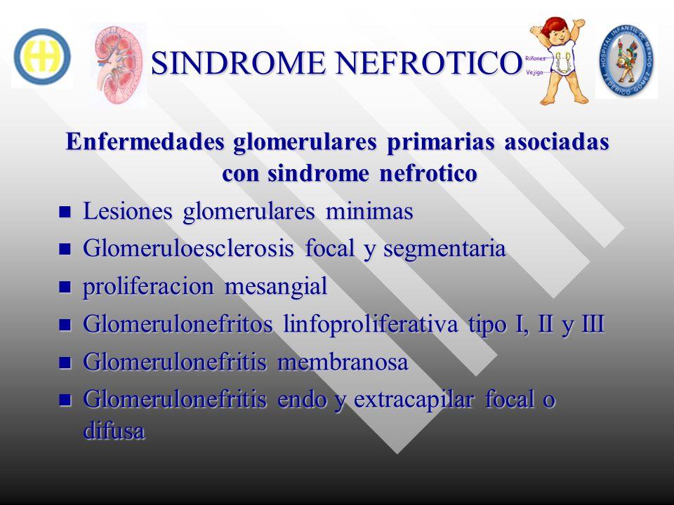 SINDROME NEFROTICO Enfermedades glomerulares primarias asociadas con sindrome nefrotico Lesiones glomerulares minimas Lesiones glomerulares minimas Gl