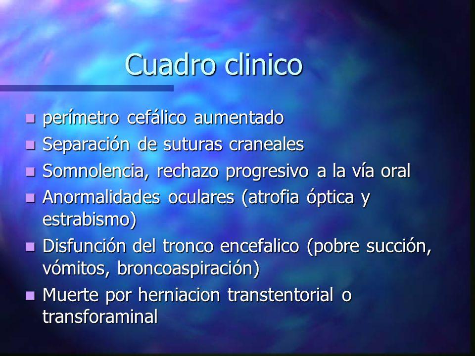 Cuadro clinico perímetro cefálico aumentado perímetro cefálico aumentado Separación de suturas craneales Separación de suturas craneales Somnolencia,