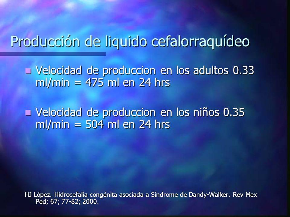 Producción de liquido cefalorraquídeo Velocidad de produccion en los adultos 0.33 ml/min = 475 ml en 24 hrs Velocidad de produccion en los adultos 0.3