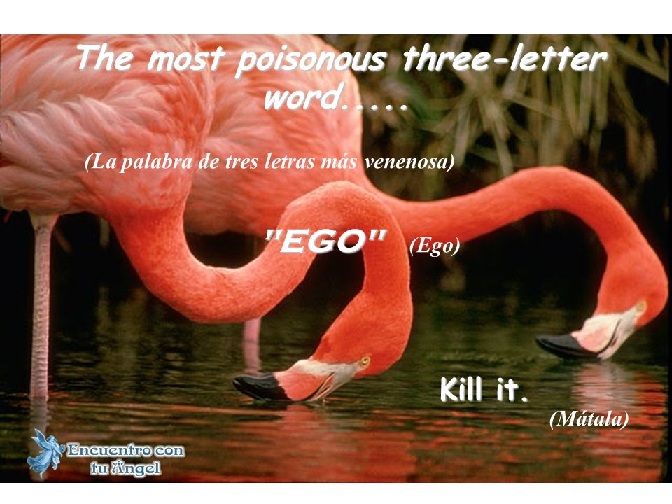 The most poisonous three-letter word..... EGO Kill it.