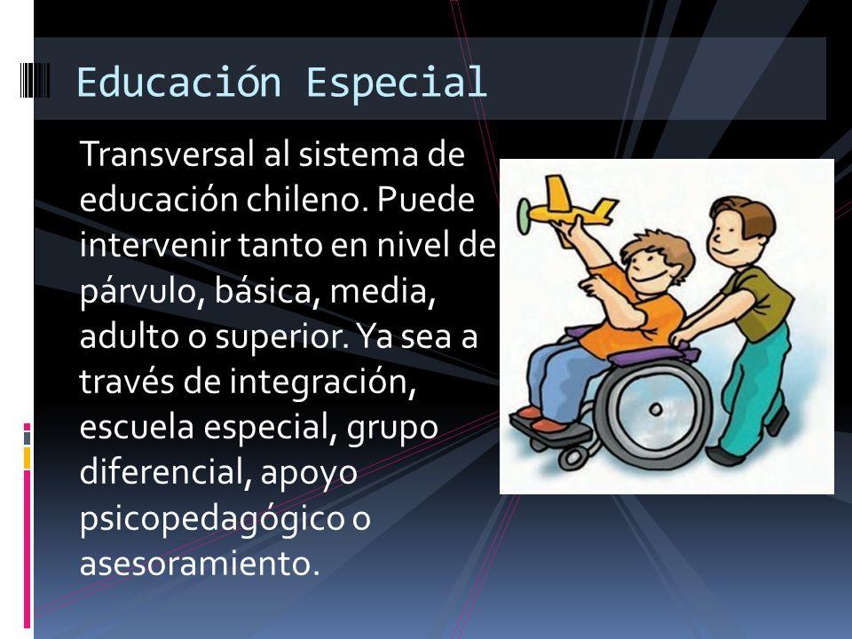 Transversal al sistema de educación chileno. Puede intervenir tanto en nivel de párvulo, básica, media, adulto o superior. Ya sea a través de integrac