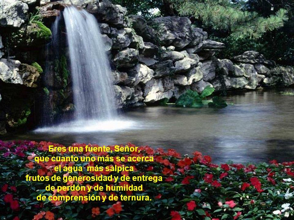 Eres una fuente, Señor, que cuanto uno más se acerca el agua más salpica frutos de generosidad y de entrega de perdón y de humildad de comprensión y de ternura.