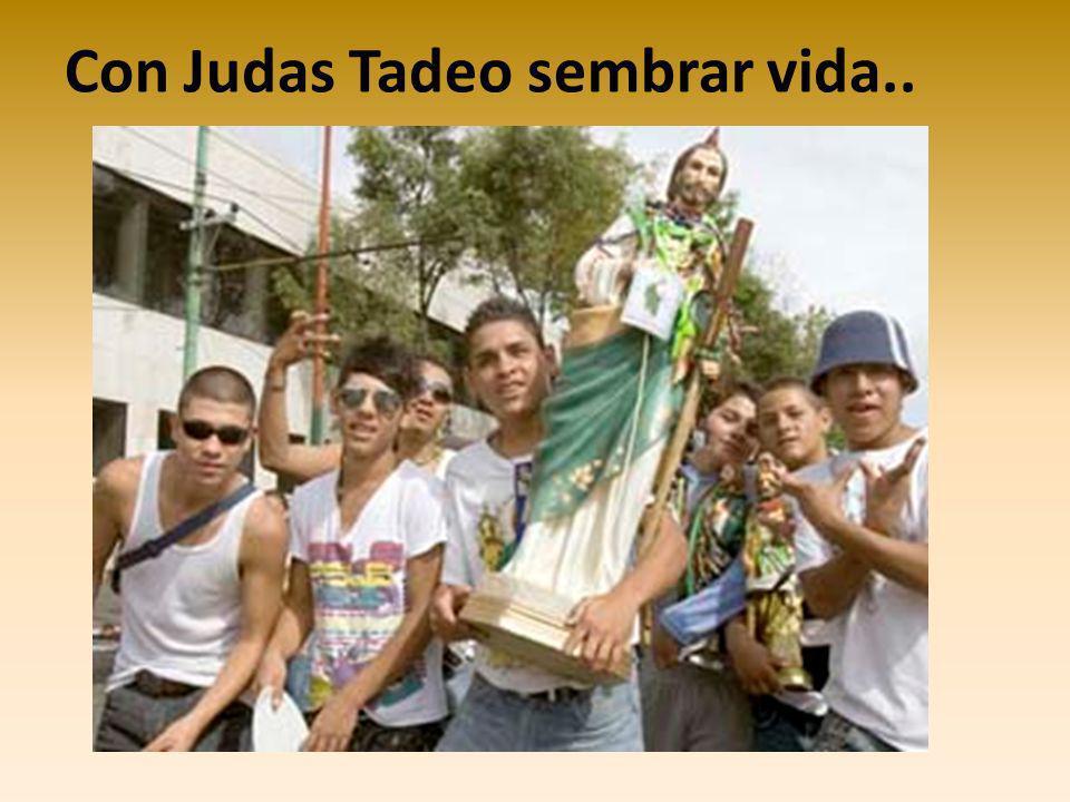 Con Judas Tadeo sembrar vida..