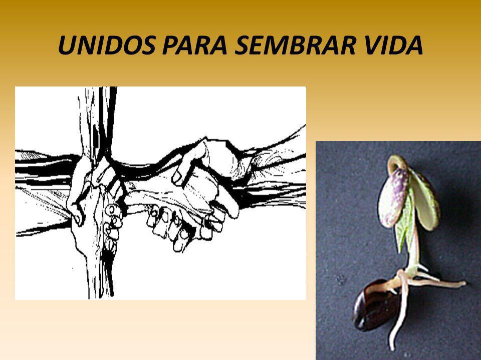 Jesús tiene sueños para mí! Permanezcan conmigo! Si permanecen conmigo producirán mucho fruto, pero sin mí no pueden hacer nada! Uds. son mis amigos..