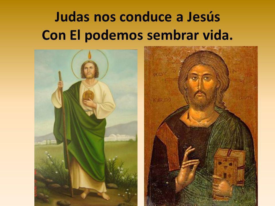 Construir una amistad solidaria NO HAY AMOR MÁS GRANDE QUE DAR LA VIDA POR LOS AMIGOS JESÚS
