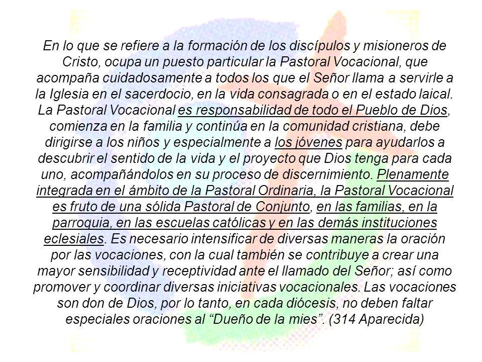 En lo que se refiere a la formación de los discípulos y misioneros de Cristo, ocupa un puesto particular la Pastoral Vocacional, que acompaña cuidados