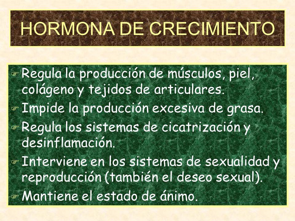 HORMONA DE CRECIMIENTO F Regula la producción de músculos, piel, colágeno y tejidos de articulares.